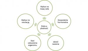 Mechanizmy wpływu diety na płodność