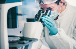 Klinika leczenia niepłodności a skuteczność in vitro. Co zwiększa szanse na ciążę po in vitro?
