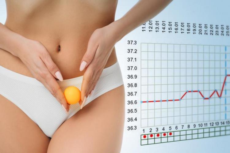 Owulacja a ciąża