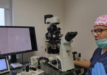 Plemniki przed in vitro