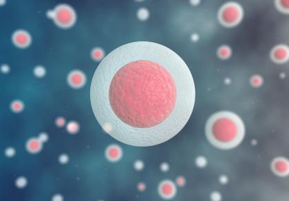 Zamrażanie komórki jajowej