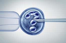 In vitro a koronawirus