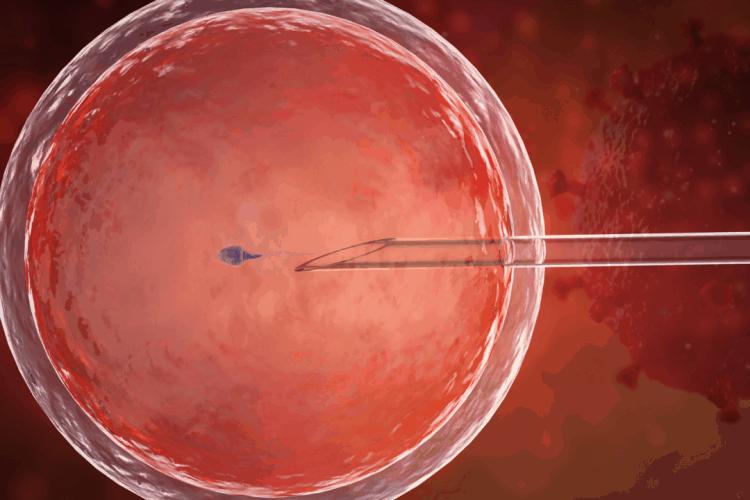 Czy in vitro w czasie epidemii koronawirusa jest bezpieczne?