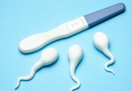 Niepłodność męska okiem androloga – to powinien wiedzieć mężczyzna starający się o dziecko