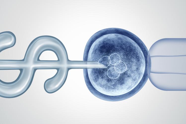 jakie są mity na temat in vitro