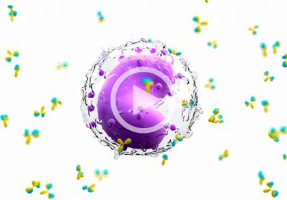 Niepłodność immunologiczna - diagnostyka i leczenie